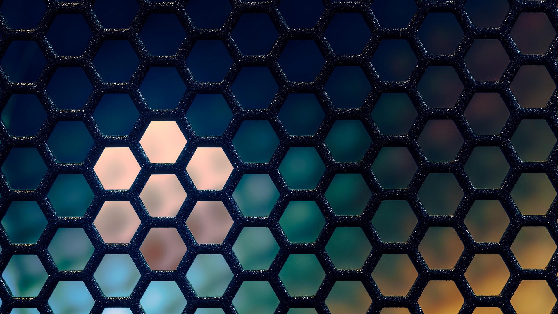 The Grid I.